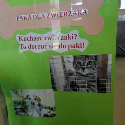 Galeria paka_dla_zwierzaka